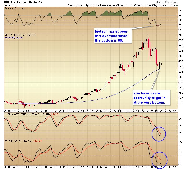 no bear market